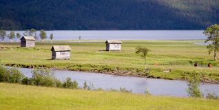 Huts in Summer Meadow in the Village of Ammarnas. Near the Kungsleden trail in northern Sweden Stock Photography