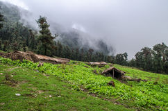 Huts at Tolpani Campsite - Roopkund Trek. A view of Tolpani campsite on Roopkund trek in Uttarakhand, India Stock Photo