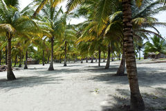 Huts on a tropical beach Royalty Free Stock Image