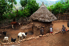 Huts in the village of Konso. Photo taken on: dec 27, 2009. Huts in the village of Konso Royalty Free Stock Images