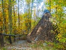 Hutte antique sur la forêt l'automne Photo libre de droits