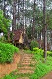 Hutte dans la forêt de pin chez Pang Ung chez Mae Hong Son Image libre de droits