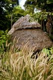 Hutte de jungle Photos libres de droits
