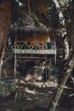 Hutte en bois de plage entre les arbres dans la jungle Photographie stock libre de droits