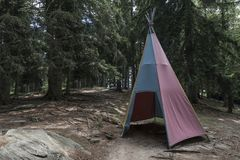 Hutte indienne dans les bois Images stock