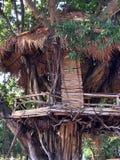 Hutte sur l'arbre Images libres de droits