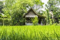 Hutte thaïlandaise d'agriculteur Image stock