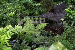 Hutte tropicale Image libre de droits