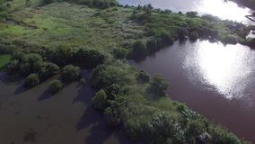 Hutten en de huizen op de mens worden de gebouwd maakten moeras en het moeras landt dichtbij het overzees die stock footage