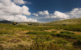 Hutten in landschap van Noorwegen royalty-vrije stock foto's