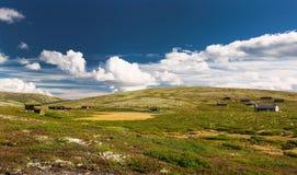 Hutten in landschap van Noorwegen stock afbeelding