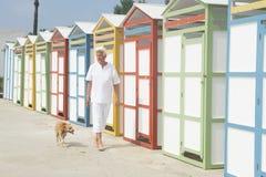 Huttes colorées de plage et homme supérieur avec le chien Image stock