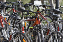 Huur een fiets Royalty-vrije Stock Afbeeldingen