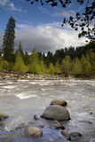 huvflod Royaltyfri Fotografi