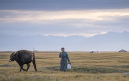 Huvsgul, Mongolei, am 6. September 2017: mongolisches Frauengehen Stockfotos