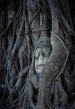 Huvud av Buddha, Thailand Fotografering för Bildbyråer