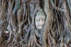 Huvud av Buddhaskulptur i Thailand Royaltyfria Bilder