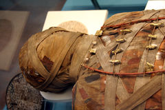 Huvud av den Egyption mamman Arkivfoton