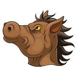 Huvud av en hästtecknad film royaltyfri illustrationer