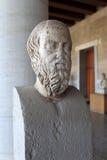 Huvud av herodotusen i museum royaltyfria foton