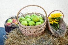 Huvud av korn, äpplen och solrosor Skörd på höstacken Royaltyfri Fotografi