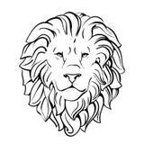 Huvud av lionen Arkivfoto