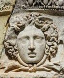 Huvud av Meduse Royaltyfri Fotografi