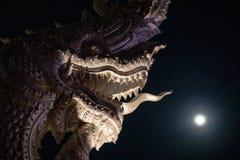 Huvud av Naga eller den buddistiska draken royaltyfri foto