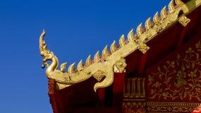 Huvud av Naga på blå himmel Royaltyfria Bilder
