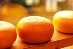Huvud av ost i lagerfönster fotografering för bildbyråer
