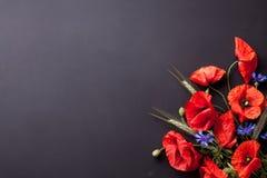 Huvud av röda vallmo, råg och blåklinter på svart bakgrund fl Arkivfoto