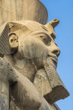 Huvud av Ramses II på den Luxor templet, Egypten arkivfoton