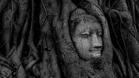Huvud av sandsten buddha på Thailand Arkivbild