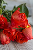 Huvud för röda rosor Royaltyfri Bild
