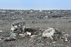 Huvud-formad sten på kusten av den sakrala sjöRakshas Tal Langa-TSOEN royaltyfri fotografi