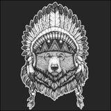 Huvudbonad för indian för stor lös grisslybjörn kall djur bärande indisk med handen för fjäderBoho den drog chic stil stock illustrationer