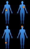 huvuddel vektor illustrationer