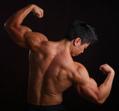 Huvuddelbyggmästare som slader bicepsen Royaltyfri Foto