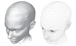 Huvudet av en flicka Arkivfoton