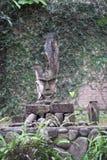 Huvudet av ett mytiskt tecken royaltyfria bilder
