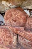 Huvudet av 48 fot den långa sova Buddhastatyn på den Pidurangala templet på Sigiriya i Sri Lanka Royaltyfri Fotografi