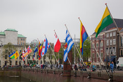 huvudhague Nederländerna Royaltyfria Bilder