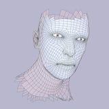 huvudperson för raster 3d head mänsklig model tråd Mänskligt polygonhuvud Framsidascanning Sikt av det mänskliga huvudet geometri Royaltyfri Illustrationer