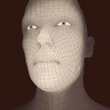 huvudperson för raster 3d head mänsklig model tråd Mänskligt polygonhuvud Framsidascanning Sikt av det mänskliga huvudet geometri Arkivfoto