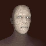 huvudperson för raster 3d head mänsklig model tråd Mänskligt polygonhuvud Framsidascanning Sikt av det mänskliga huvudet geometri Royaltyfri Foto