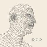 huvudperson för raster 3d head mänsklig model tråd Mänskligt polygonhuvud Framsidascanning Sikt av det mänskliga huvudet geometri Arkivbild