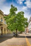 Huvudsaklig gata i den Subotica staden, Serbien Royaltyfri Bild