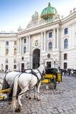 Huvudsaklig ingång till den Hofburg slotten i Wien, Österrike. Fotografering för Bildbyråer