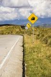 Huvudväg i bergen med en blå himmel Royaltyfri Foto