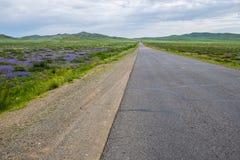 Huvudväg i fältet royaltyfri bild